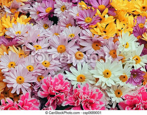 bloemen, achtergrond - csp0689001