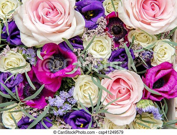 bloemen, achtergrond - csp41249579