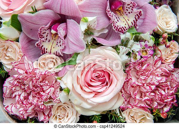 bloemen, achtergrond - csp41249524