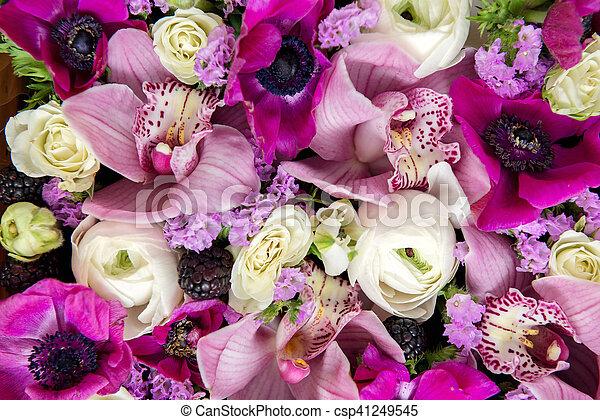 bloemen, achtergrond - csp41249545