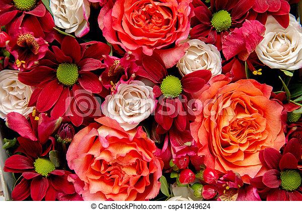 bloemen, achtergrond - csp41249624