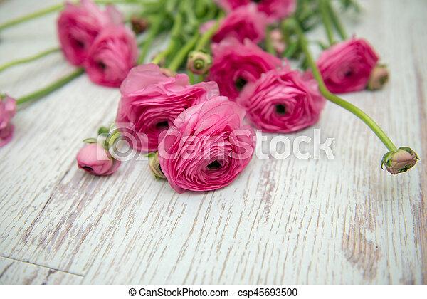 bloemen, achtergrond - csp45693500