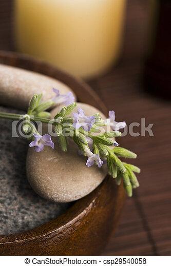 bloemen, essentiële olie, lavendel - csp29540058