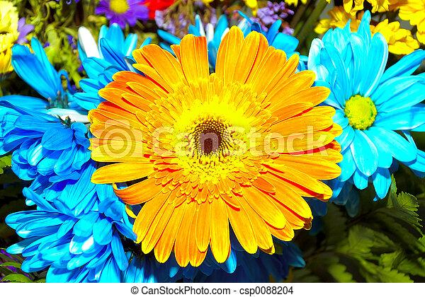 bloemen - csp0088204