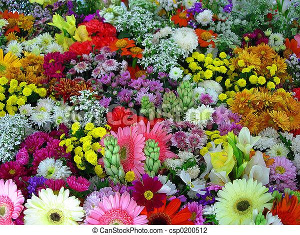 bloemen, tentoonstelling - csp0200512