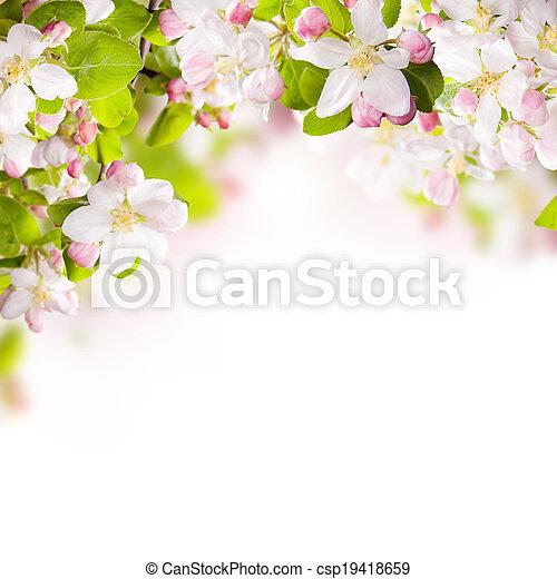 bloemenrand - csp19418659
