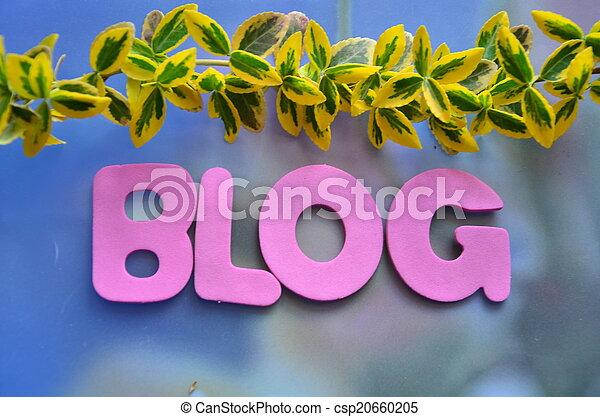 blog - csp20660205
