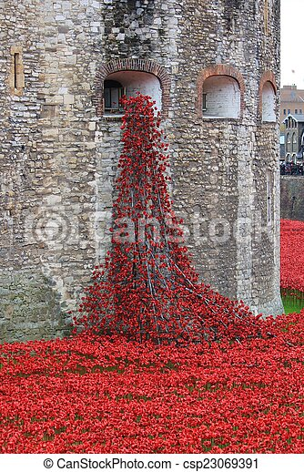 Blood Swept Lands and Seas of Red Poppies  - csp23069391