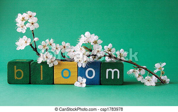 bloom word with plum blossoms - csp1783978