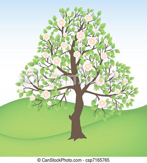 blooming tree - csp7165765