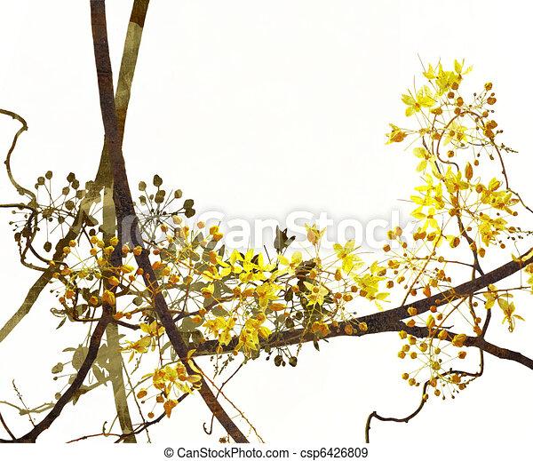 Blossom Art on White Background - csp6426809