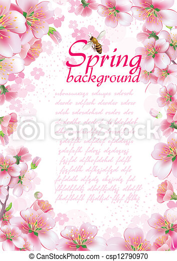 blossom , lente, achtergrond, kers - csp12790970