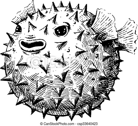 Blowfish - csp33640423