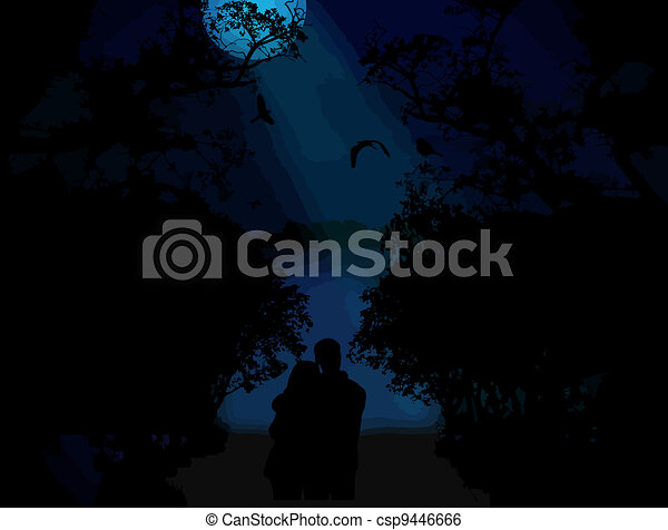 blu, amanti, tramonto - csp9446666