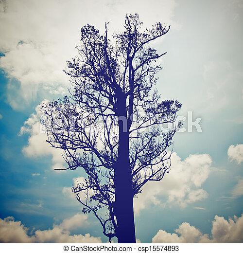 blu, silhouette, cielo, albero, effetto, filtro, retro - csp15574893