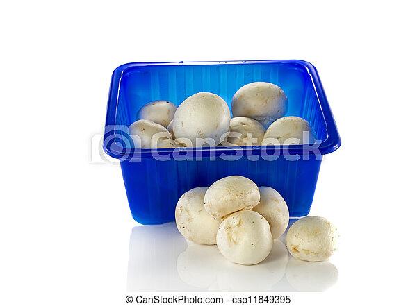 blue box with mushrooms - csp11849395