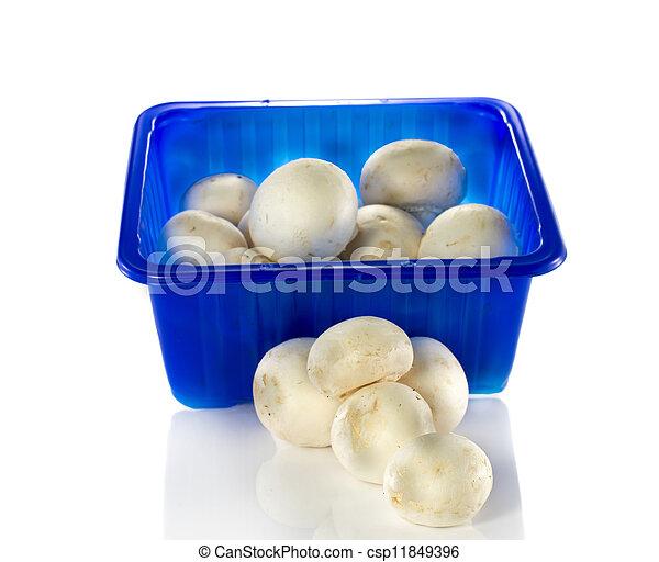 blue box with mushrooms - csp11849396
