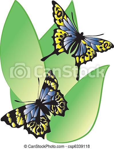 Blue butterflies  - csp6339118