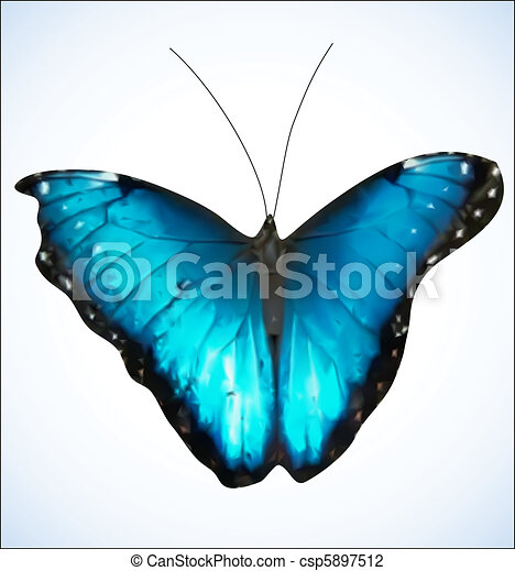 Blue Butterfly. EPS8 vector - csp5897512