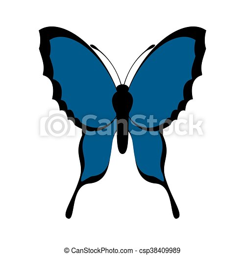 blue Butterfly icon. Insect design. Vector graphic - csp38409989