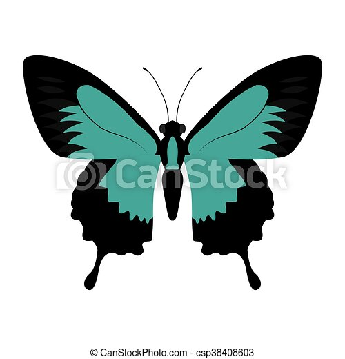 blue Butterfly icon. Insect design. Vector graphic - csp38408603