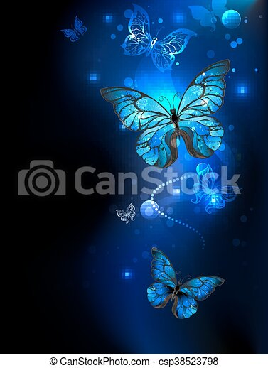 Blue butterfly in the dark - csp38523798