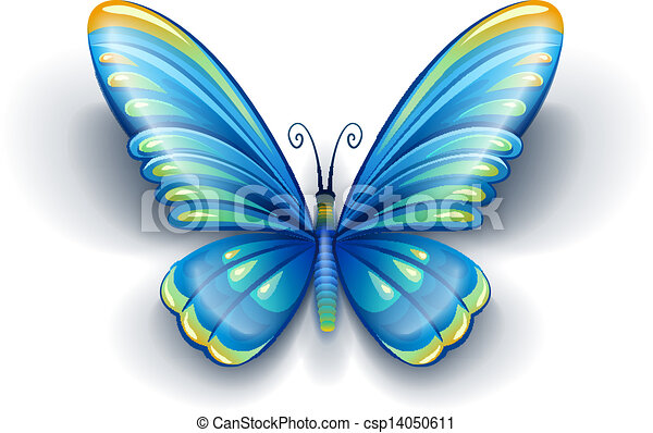 blue butterfly with color wings - csp14050611