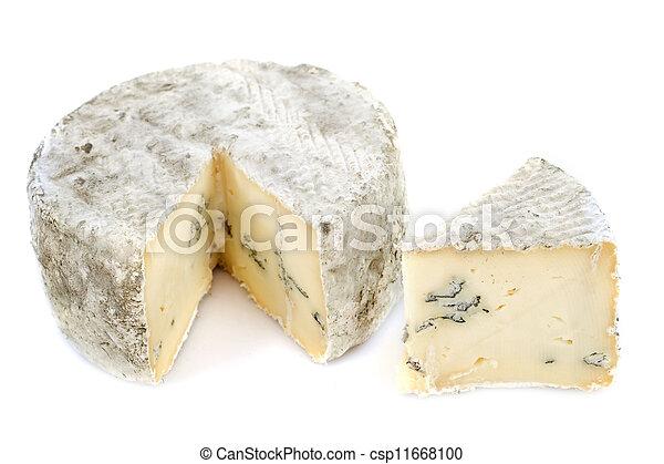 blue cheese - csp11668100