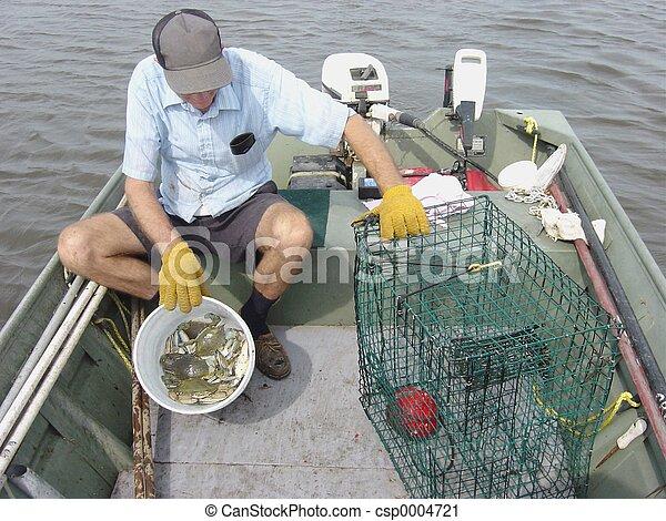 Blue crabs - csp0004721