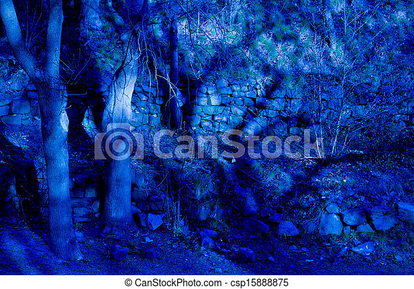 Blue fantasy twilight forest - csp15888875