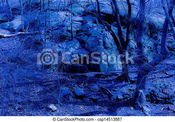 Blue fantasy twilight forest - csp14513887