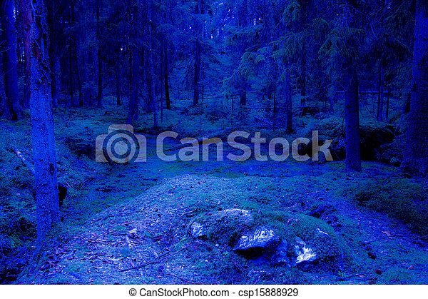 Blue fantasy twilight forest - csp15888929