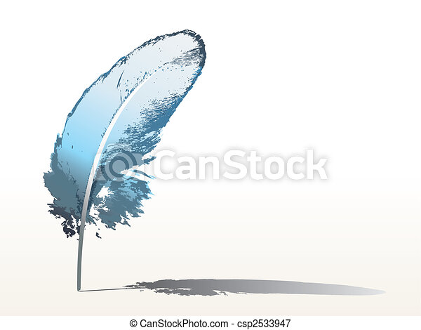 blue feather - csp2533947