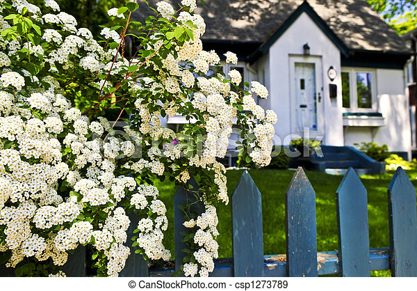 Blue fence with white flowers - csp1273789