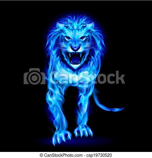 Blue fire lion - csp19730520