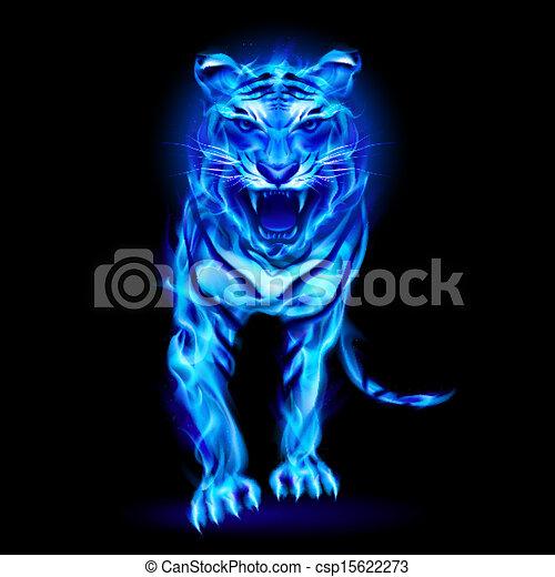Blue fire tiger. - csp15622273