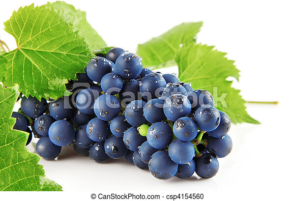 blue grape with green leaves isolated fruit - csp4154560