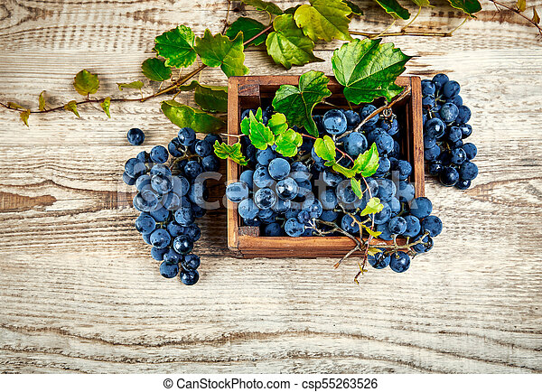 Blue grapes in box with willow - csp55263526