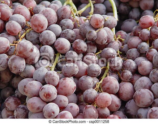 blue grapes - csp0011258