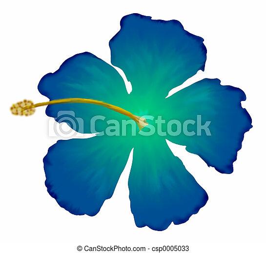 Blue Hibiscus - csp0005033