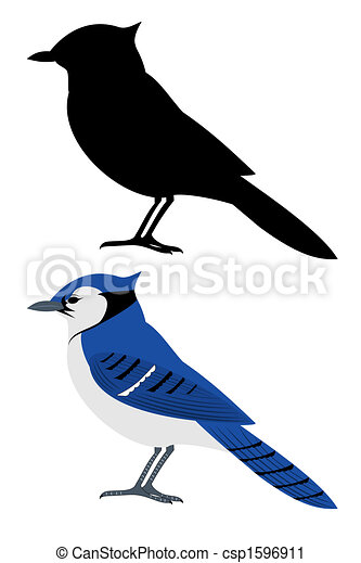 blue jay clipart search illustration drawings and vector eps rh canstockphoto com blue jays baseball clipart toronto blue jay clipart