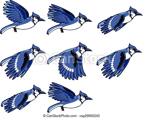 blue jay flying sprite vector illustration of blue jay bird eps rh canstockphoto com blue jay clipart free blue jay clipart black and white