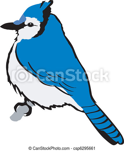 blue jay vector clip art search illustration drawings and eps rh canstockphoto com blue jay clipart for school shirts blue jay clipart black and white