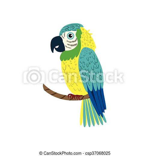 Blue Macaw Parrot - csp37068025