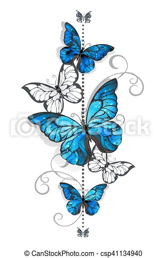 Blue morpho and white butterfly - csp41134940
