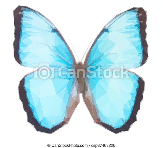 blue morpho butterfly - csp37483228