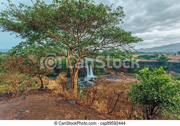 Blue Nile Falls in Bahir Dar, Ethiopia - csp89592444