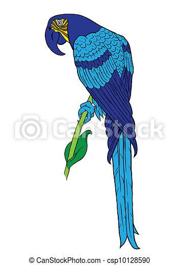 Blue parrot - csp10128590