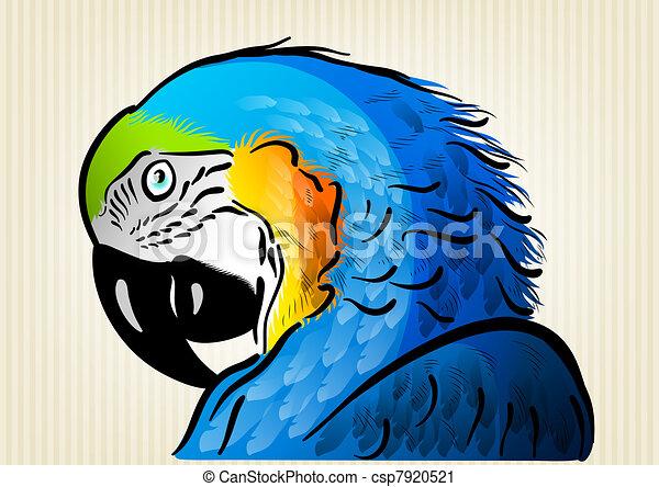 blue parrot - csp7920521