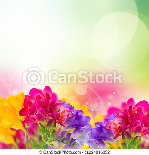 Blue pink and yellow freesia flowers border on garden bokeh background blue pink and yellow freesia flowers csp24016052 mightylinksfo